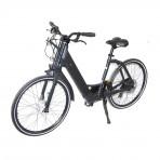 Genze - Electric Bike